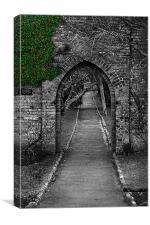 Garden Gate, Canvas Print