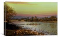Muddy River, Canvas Print