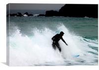Seal surfer, Canvas Print