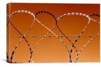 Dancing razor wire, Canvas Print
