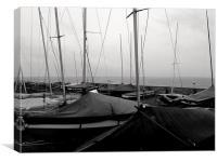 Sailing club, Canvas Print