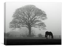 Horse in the Mist, Canvas Print