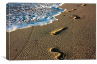 Footprints In The Sand, Miami, Florida, Canvas Print