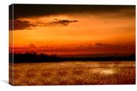 Fenland Evening Sunset