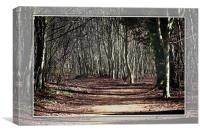 An ancient mystical woodland scene near cambridge
