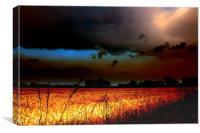 Fenland Storm