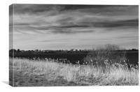 Fenland Scene - A black & white view