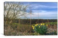 Fendland Scene on a spring day