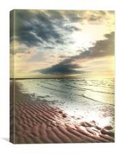 Desolate Beach, Canvas Print