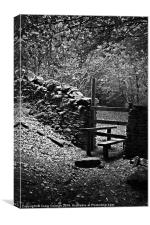 Stile in the woods, Canvas Print