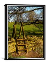 stile over the wall, Canvas Print