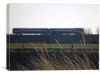 Train heading towards Hartlepool, Canvas Print