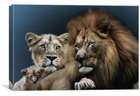 Lion Family, Canvas Print