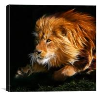 Raw Lion Power Fractal, Canvas Print