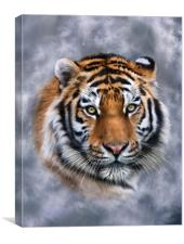 Sky Tiger, Canvas Print