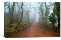 Foggy Woodland Trail, Canvas Print