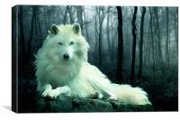 Arctic Wolf, Canvas Print