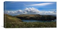 View Over Skomer, Canvas Print