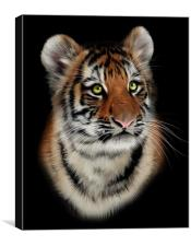 Poseidon - Tiger art, canvas and print, Canvas Print