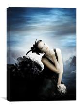 The Black Swan, Canvas Print
