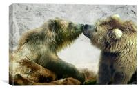 Bearkiss, Canvas Print
