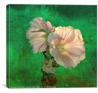 Hollyhocks, Canvas Print