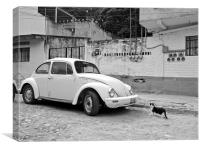 A Beetle and a cat in Mexico, Canvas Print