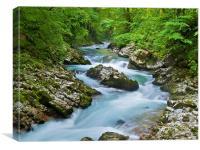 Vintgar Gorge River Flow, Canvas Print