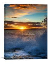 Winterfield Sunset, Canvas Print
