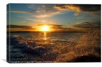 Wave Breaking Sunset Dunbar., Canvas Print
