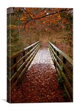 Woodland Bridge Autumn, Canvas Print