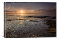 Evening at Seton Sands, Canvas Print