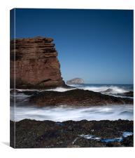 Cliff Edge to Bass Rock, Canvas Print
