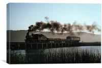South Africa Steam, Canvas Print