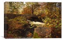 Autumn Splendour., Canvas Print
