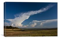 Clouds over Minneriya National Park, Canvas Print