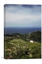 Farmhouse overlooking the Agean Ocean, Canvas Print