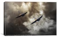 3 Squadron, Canvas Print