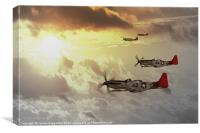 Red Tails, Canvas Print