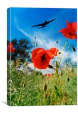 Lest We Forget, Canvas Print
