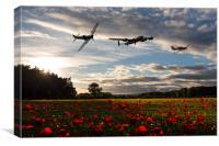 Battle of Britain Poppy Pride, Canvas Print