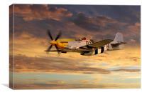 P-51 Ferocious Frankie, Canvas Print