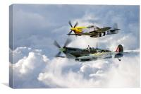 Flying Brothers, Canvas Print