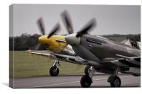 Classic Warbirds, Canvas Print