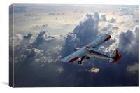 Luscombe Flight, Canvas Print