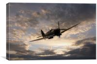 Golden Spitfire, Canvas Print
