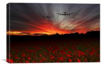 A Poppy Field Dream , Canvas Print