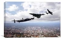 Avro Birds, Canvas Print