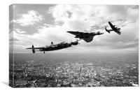Avro Birds - Mono , Canvas Print
