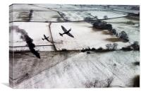 Winter Aces , Canvas Print